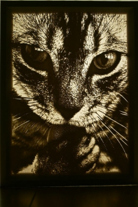 Lithophane-cat-with-light
