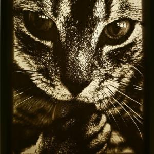 Lithophane-cat-with-light